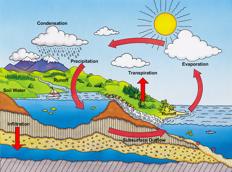 A Lot Of Diagrams Explaining The Water Cycle Make It Look So Difficult To Understand But Here Is Simple Diagram Least Complex Process We